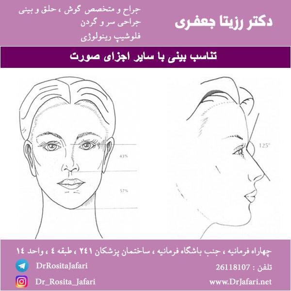 تناسب بینی با سایر اجزای صورت